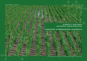 fosfatazy2.jpg
